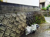 外壁高圧洗浄 作業中 雑草除去ゴミ