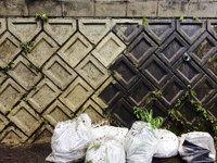 外壁高圧洗浄 作業中 雑草除去ゴミ2