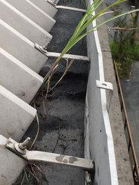 高所雨樋草・灰除去作業 屋根雨樋の灰20CM程堆積