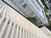 高所雨樋草・灰除去作業 屋根勾配 右側