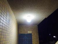 5階建てマンション共有部清掃 天井蜘蛛巣除去 鹿児島市