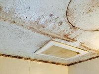 浴室周りクリーニング 汚れハードクラス 天井部分カビ、水垢汚れ 鹿児島市