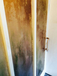浴室周りクリーニング 汚れハードクラス ドアのカビ、水垢 鹿児島市