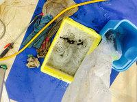 美容室店舗ワックスと業務用エアコンクリーニング 4方向天カセタイプ 排洗浄液 鹿児島市