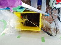お掃除機能付きエアコンクリーニング 分解洗浄完了 カビで真っ黒な洗浄液