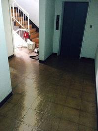 5階建てマンション 定期ワックス 内廊下エレベーター周辺2F 鹿児島市
