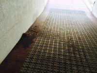 マンション定期清掃 駐車場スロープ2 鹿児島市