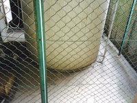 5階建てマンション 定期清掃 給水タンク周辺の灰除去 鹿児島市