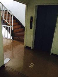 5階建てマンション 定期ワックス 内廊下エレベーター周辺4F 鹿児島市