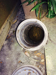 マンション 埋設排水管 灰詰まり洗浄 内部汚れ 鹿児島市
