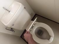 社宅 退去時2dkまるごとクリーニングパックサービス 鹿児島市内 トイレクリーニング完了