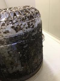 洗濯槽 分解洗浄除菌サービス ビートウォッシュ 鹿児島市内のお客様②